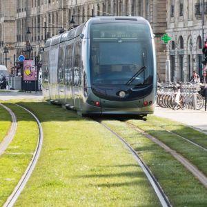 tramway-bordeaux